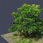 NEC с помощью агрономии, дронов и облачных услуг поможет улучшить фруктовые сады, Paratechnik.ru